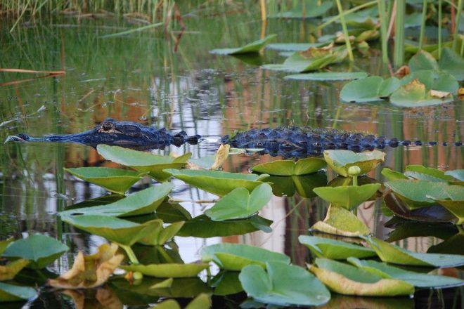Sawgrass Recreation Park, Fort Lauderdale, United States