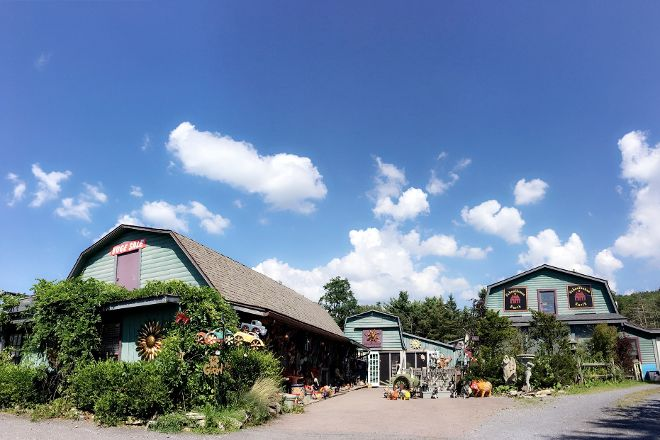 Schoolhouse Earth, Friendsville, United States