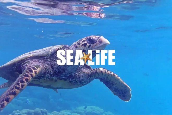 SEA LIFE Kansas City, Kansas City, United States