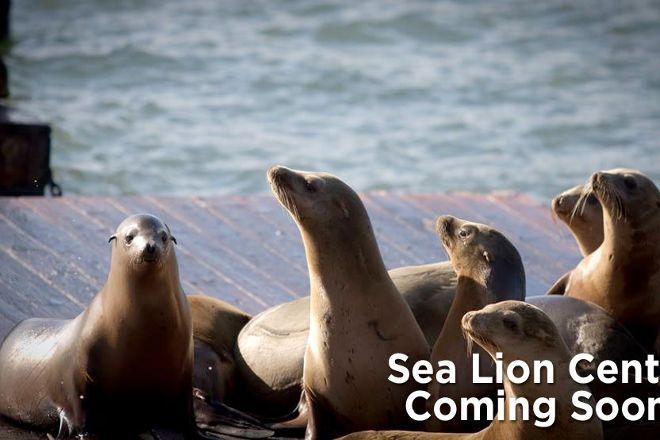 Sea Lion Center, San Francisco, United States