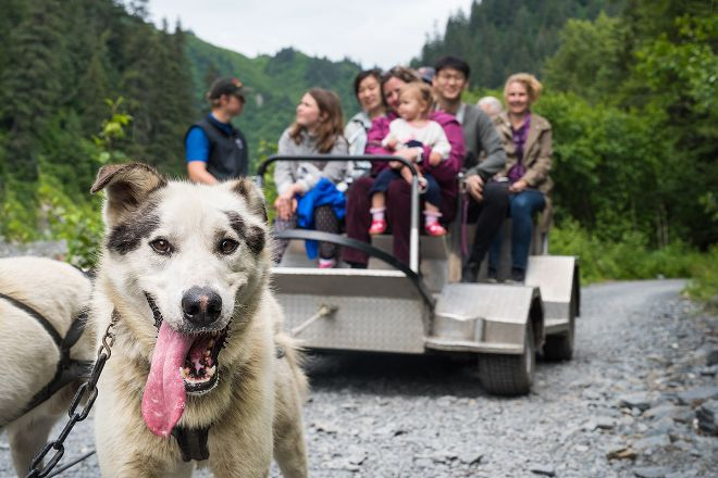 Seavey's IdidaRide Sled Dog Tours, Seward, United States