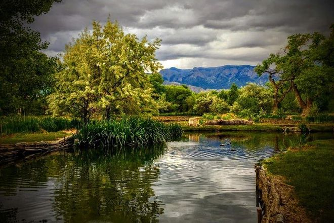 Shady Lakes Trout & Bass Fishing, Albuquerque, United States