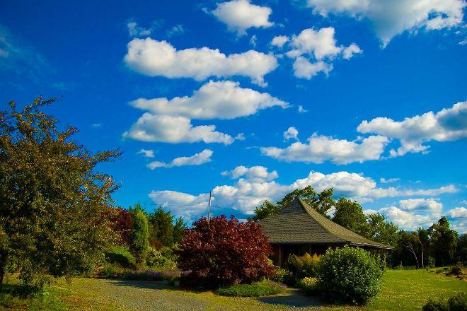 Shalestone Vineyards, Lodi, United States