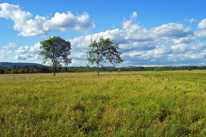 Shawangunk Grasslands National Wildlife Refuge, Wallkill, United States