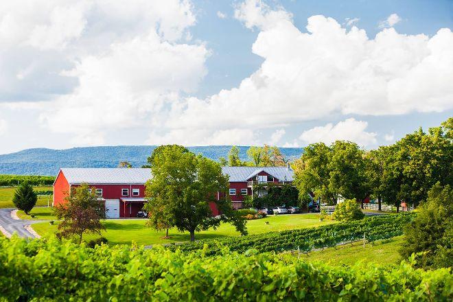 Shenandoah Vineyards, Edinburg, United States