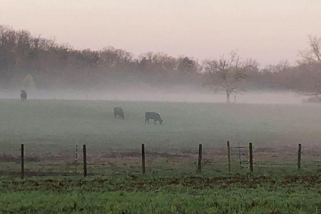 Shlagel Farms, Waldorf, United States