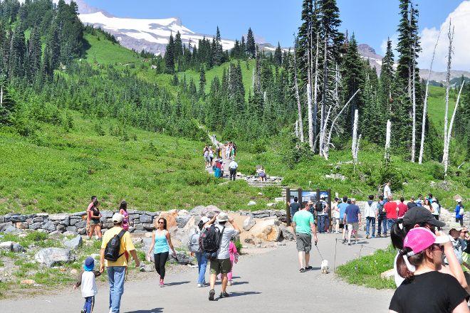 Skyline Trail, Mount Rainier National Park, United States