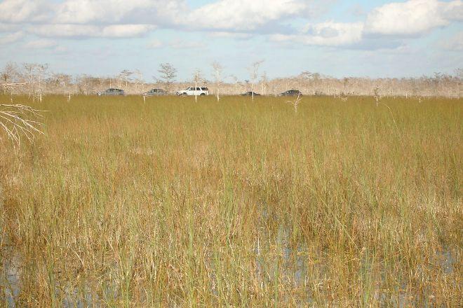 Slough Slog, Everglades National Park, United States