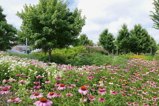 Smale Riverfront Park, Cincinnati, United States