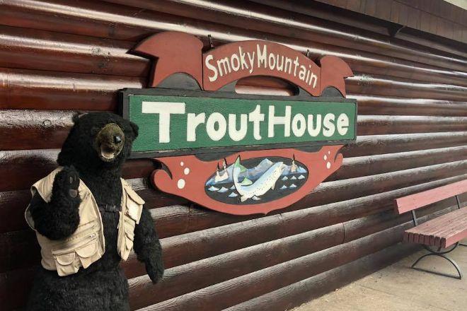 Smoky Mountain Nut House, Gatlinburg, United States