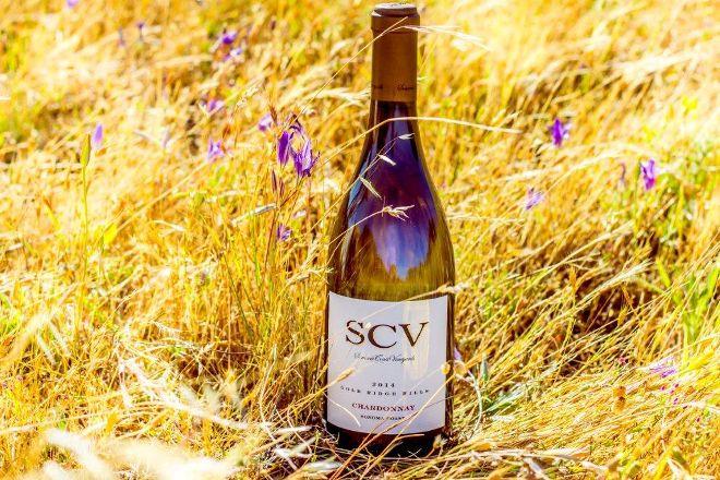 Sonoma Coast Vineyards, Bodega Bay, United States