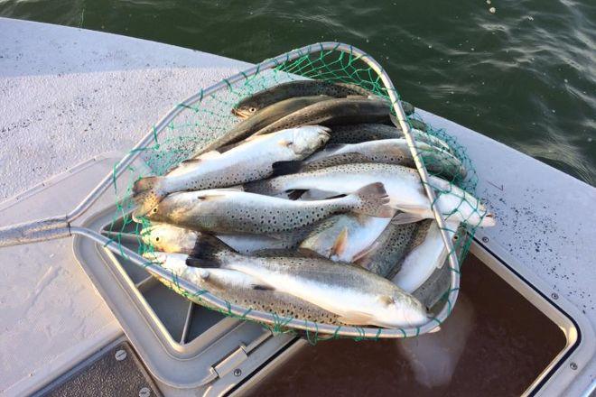 Southbound Fishing Charters, LLC, Corpus Christi, United States