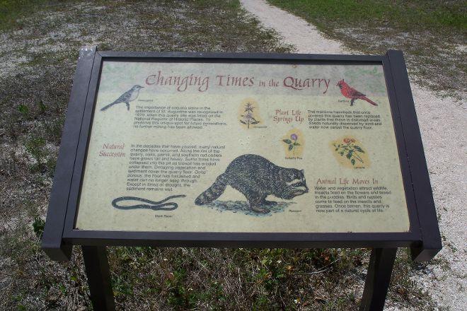 St. Augustine Wild Reserve, St. Augustine, United States