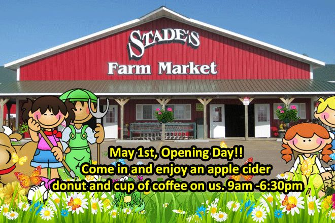 Stade's Farm and Market, McHenry, United States