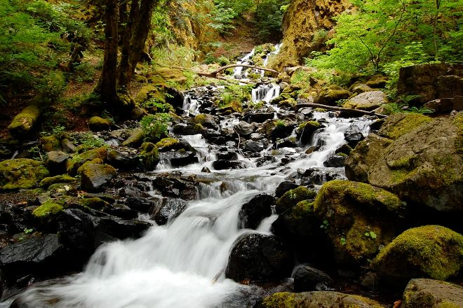 Starvation Creek Ridge Loop, Cascade Locks, United States