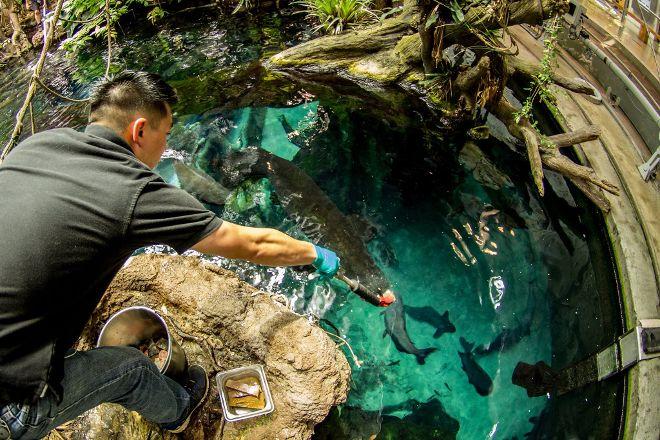 Steinhart Aquarium, San Francisco, United States
