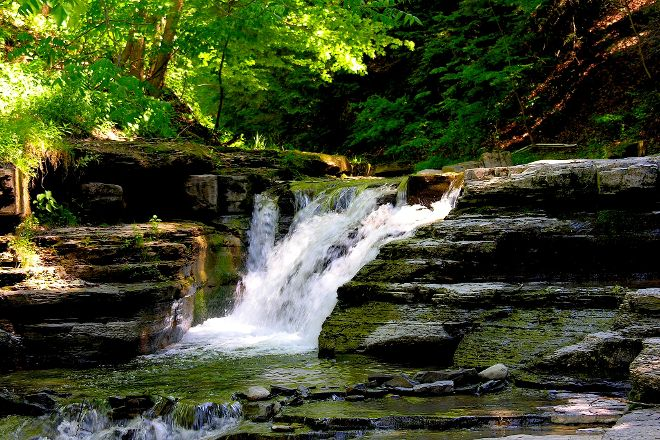 Stony Brook State Park, Dansville, United States