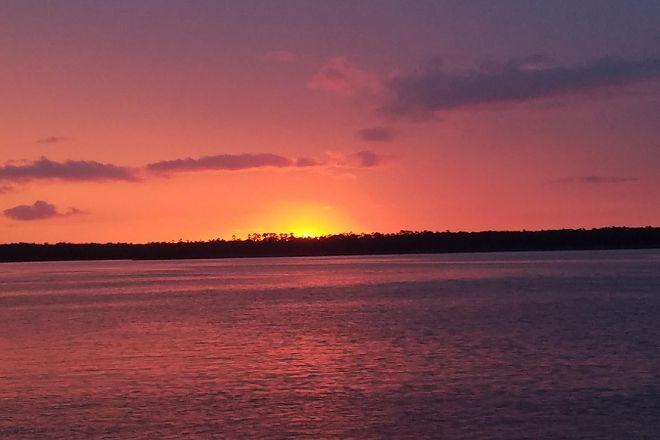 Sunny Lady Dolphin & Sunset Cruise at The Wharf, Orange Beach, United States