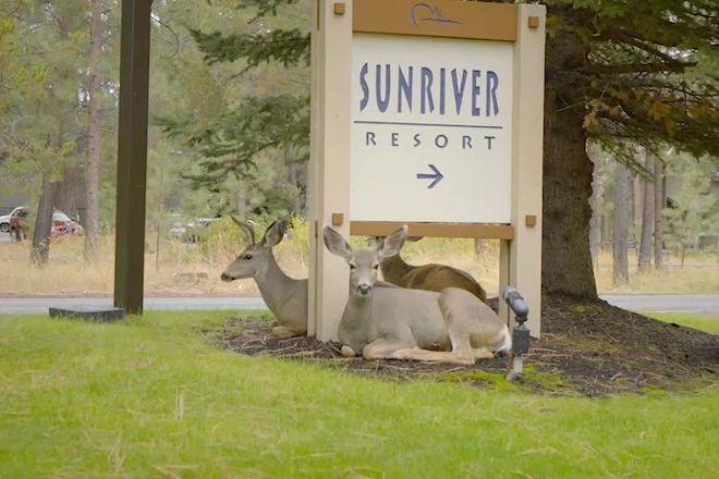 Sunriver Resort, Sunriver, United States
