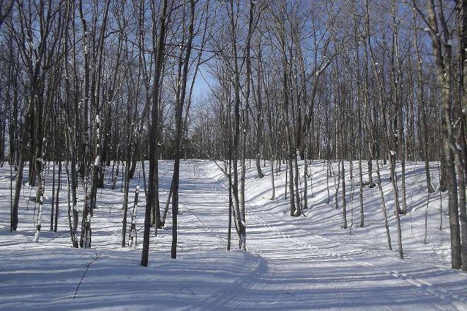 Swedetown Ski Trails, Calumet, United States