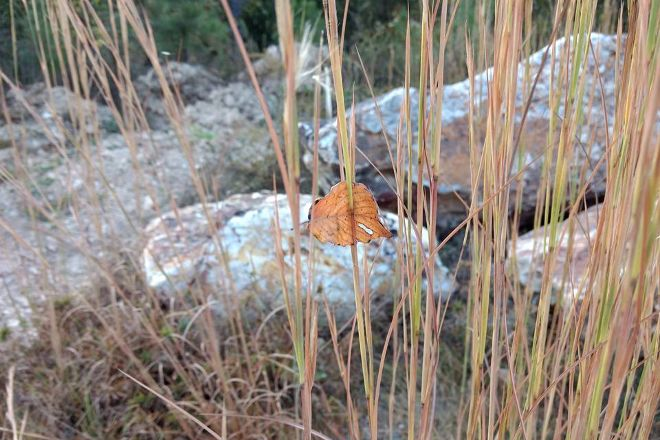 Sweet Surrender Crystal Mine, Story, United States