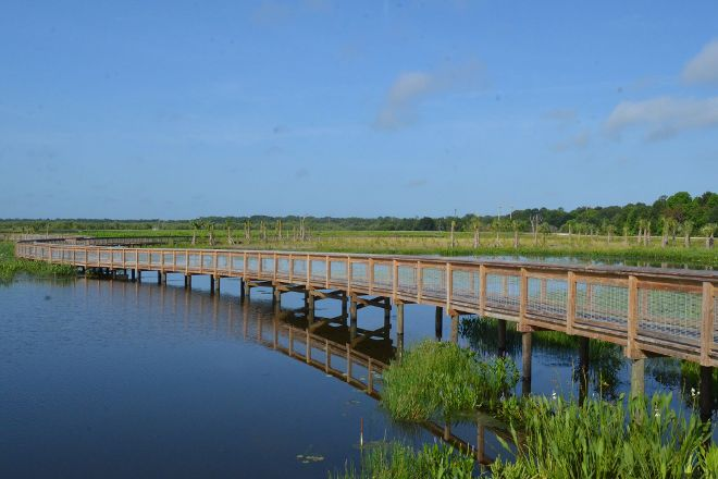 Sweetwater Wetlands Park, Gainesville, United States