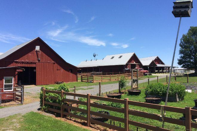 Temple Hall Farm Regional Park, Leesburg, United States