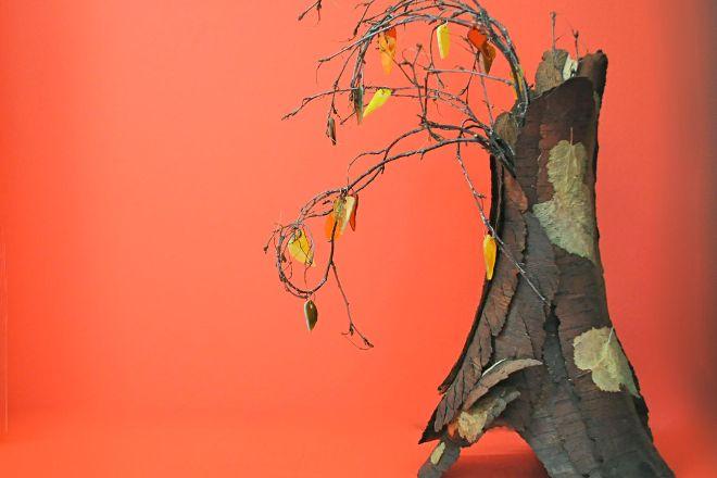 The Dancing Leaf Gallery, Talkeetna, United States