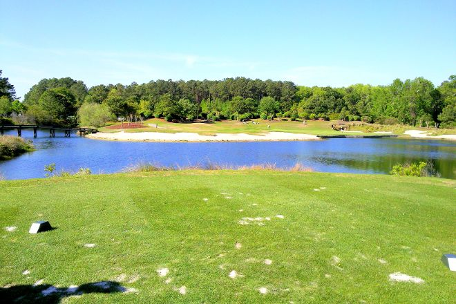 The Golf Courses of Palmetto Dunes, Hilton Head, United States