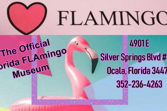 The Official Florida Flamingo Museum, Ocala, United States