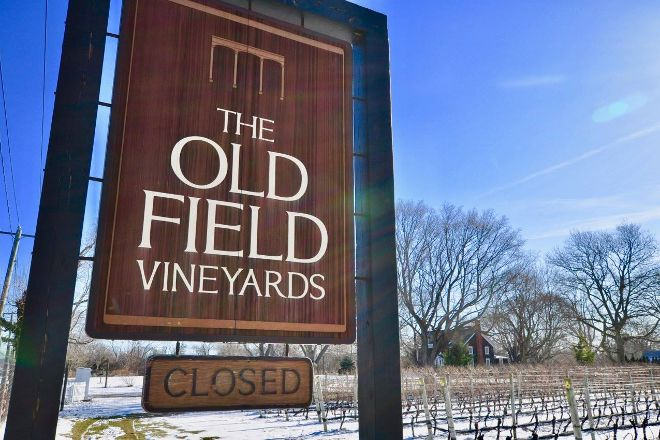The Old Field Vineyards, Southold, United States