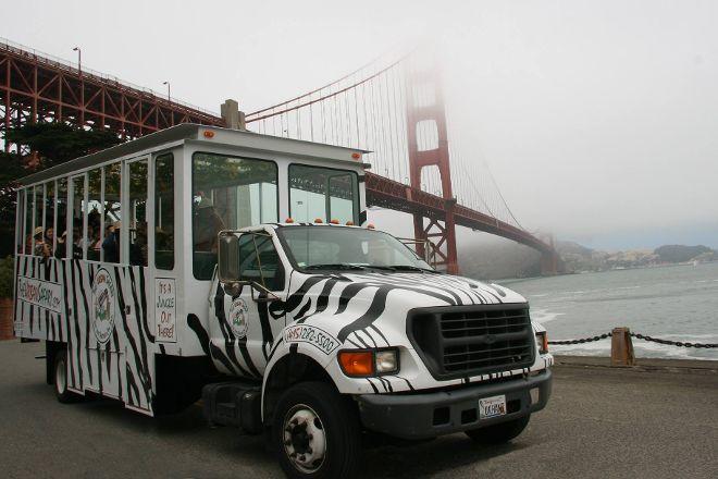 The Urban Safari, San Francisco, United States