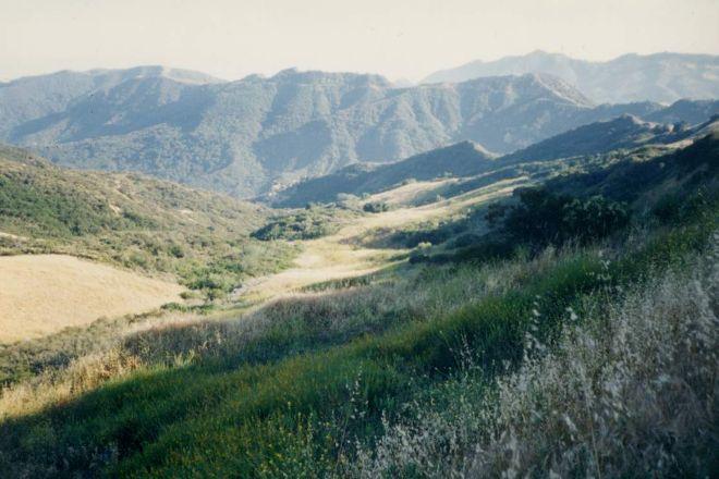 Topanga State Park, Los Angeles, United States