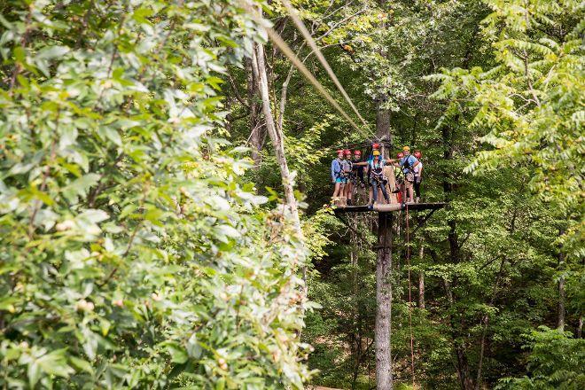 Tree Frog Canopy Tours Zipline, Glenmont, United States
