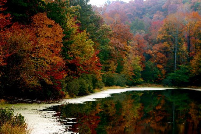 Tribble Mill Park, Lawrenceville, United States