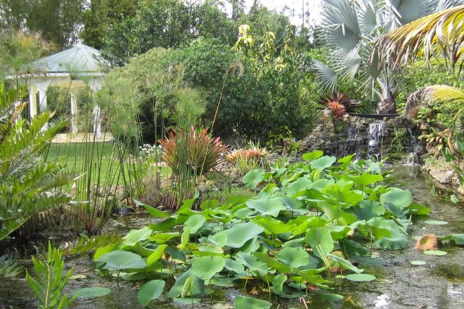 Tropical Ranch Botanical Gardens, Stuart, United States