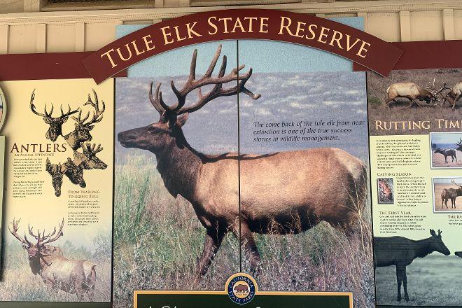 Tule Elk Preserve, Point Reyes National Seashore, United States