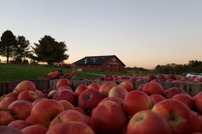 Twin Star Orchards, New Paltz, United States