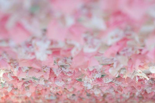 Under the Cherry Blossoms, Mount Dora, United States