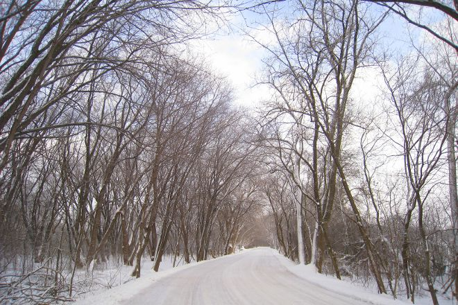 University of Wisconsin-Madison Arboretum, Madison, United States