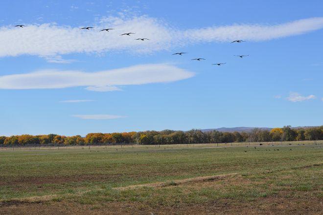 Valle de Oro National Wildlife Refuge, Albuquerque, United States
