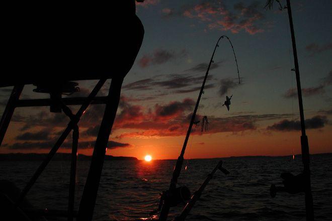 Watta Bite Charter Fishing, Glen Arbor, United States