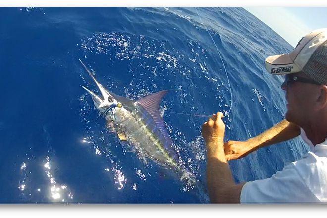 Waypoint Fishing Charters, Summerland Key, United States