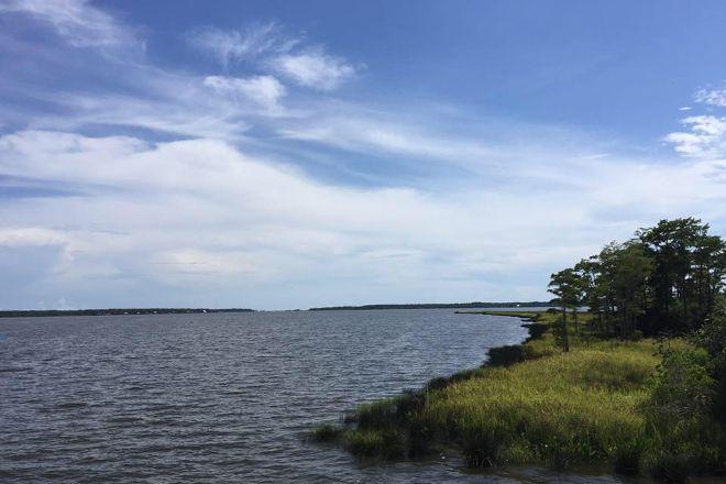 Weeks Bay Reserve, Fairhope, United States