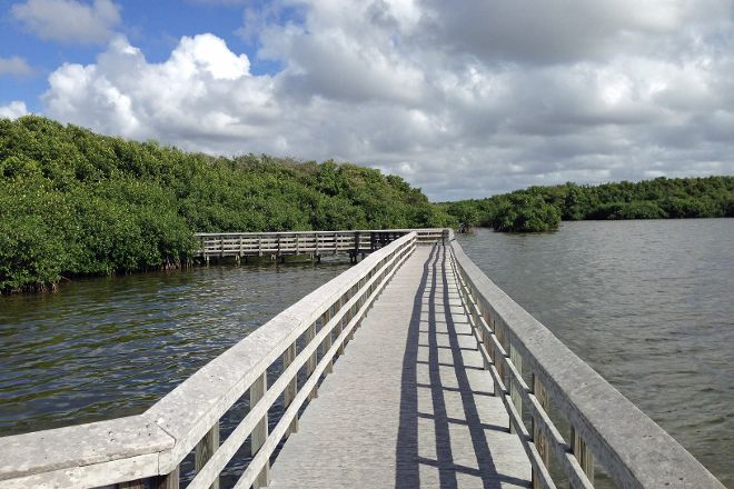 West Lake Trail, Everglades National Park, United States