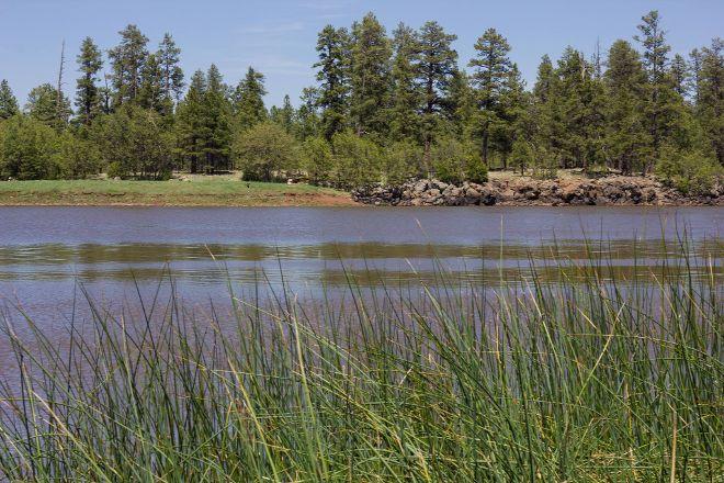 White Horse Lake Campground, Williams, United States
