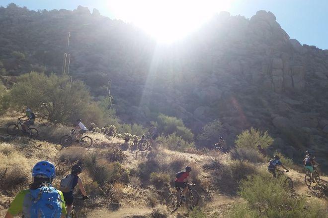 Wild Bunch Desert Guides LLC, Scottsdale, United States