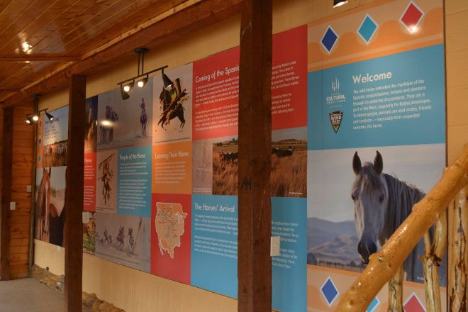Wild Horse Sanctuary, Lander, United States