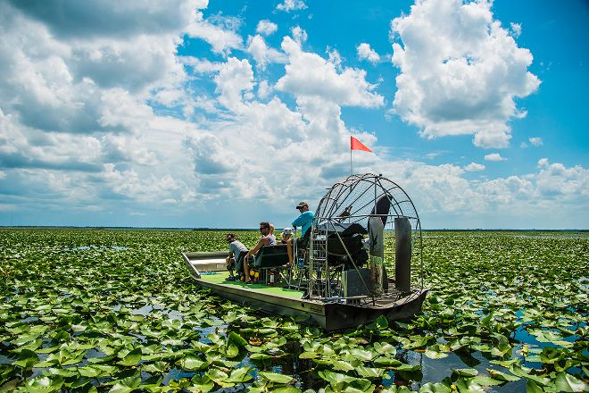 Wild Willy's Airboat Tours, Saint Cloud, United States