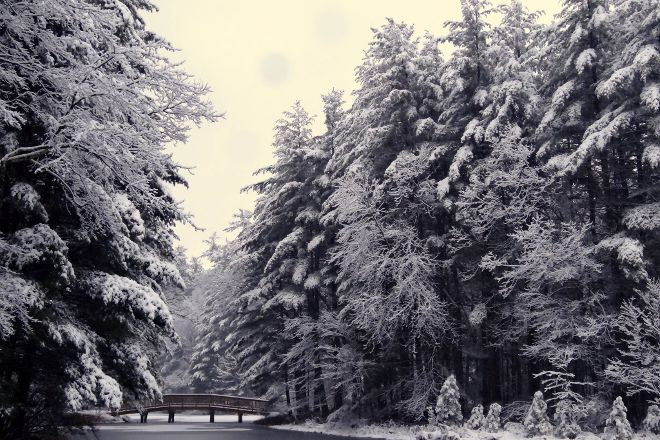 Winding Trails, Farmington, United States
